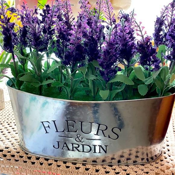 Fleurs & Jardin Lavender!